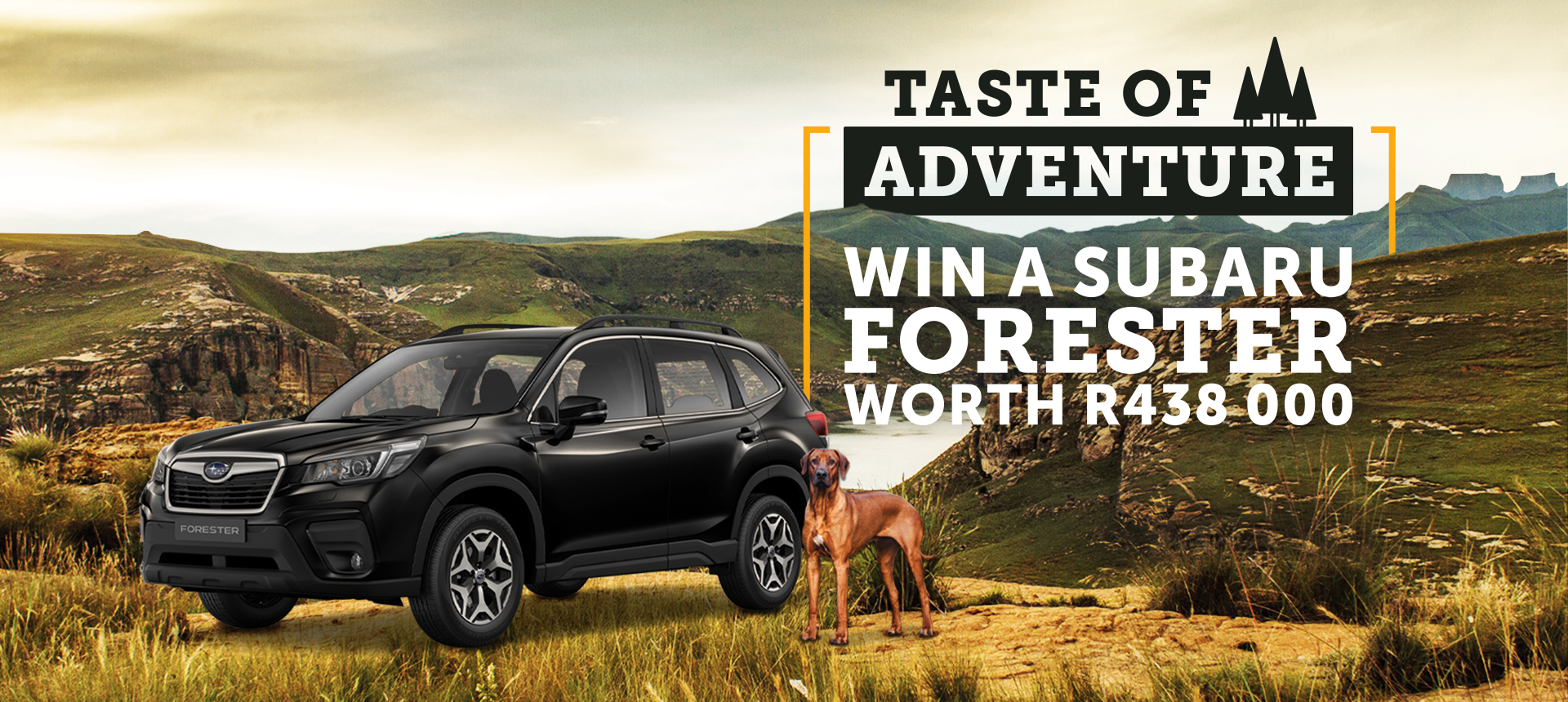 Win a Subaru with Field + Forest